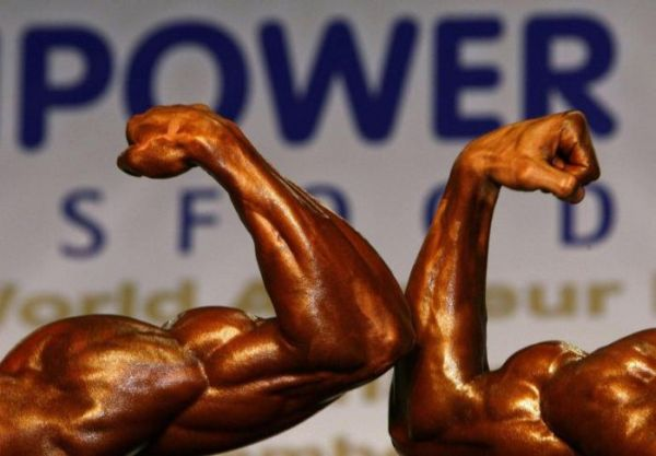 bodybuilding championship in budapest
