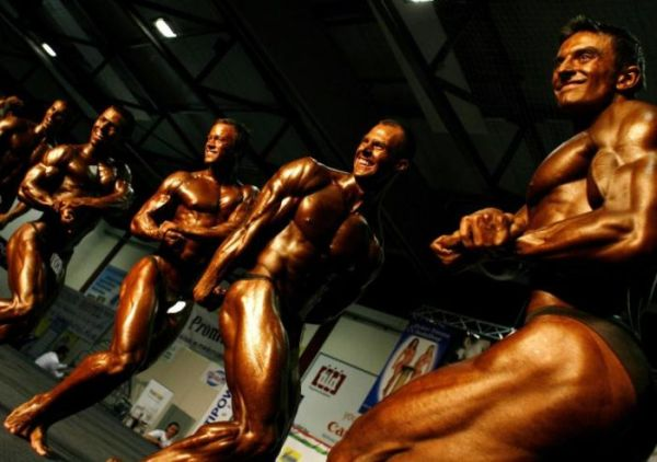 bodybuilding championship in hungary
