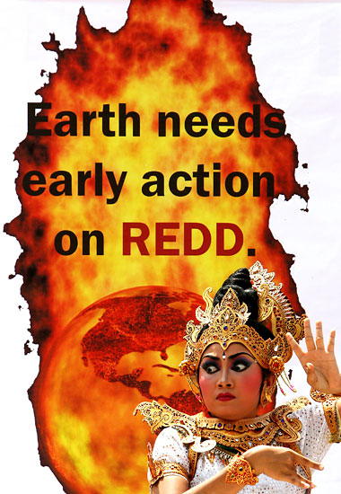 earth needs early action on REDD
