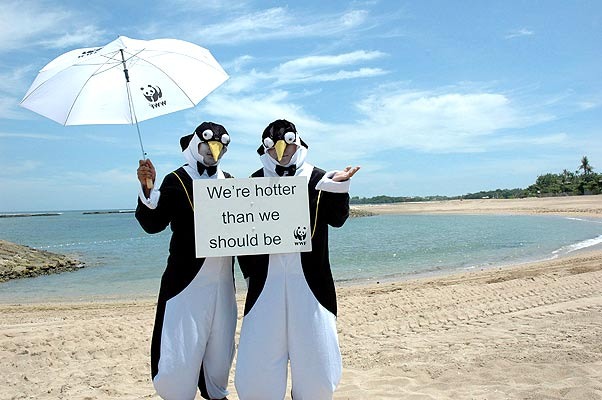 penguins_wwf_protest.jpg