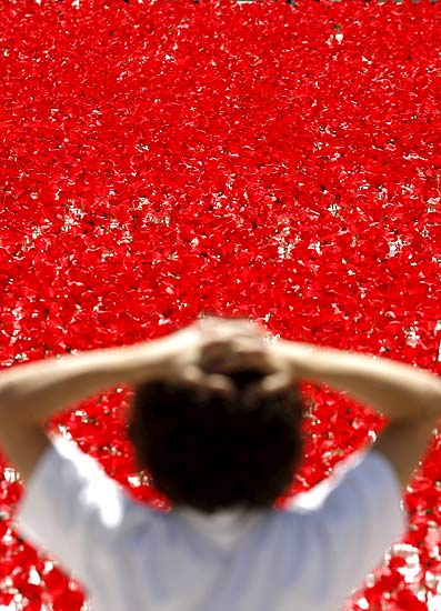 100,000 poppies, Arrival of the summer celebration, Madrid, Spain