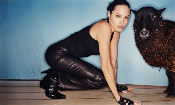 angelina_jolie_by_david_lachapelle02.jpg