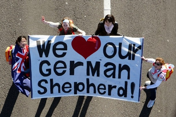 We Love Our German Shepherd