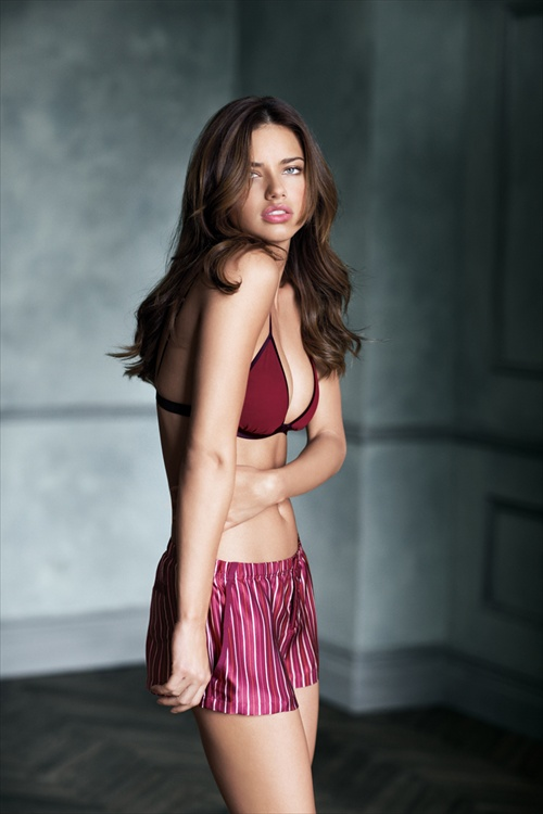 Adriana Lima Supermodel Obsession book
