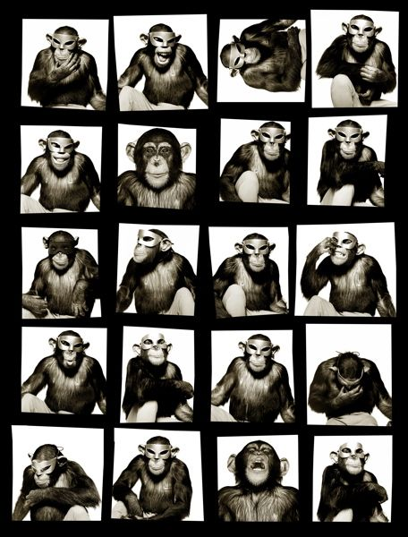 albert_watson26_monkeys_with_mask_newyork_1994.jpg