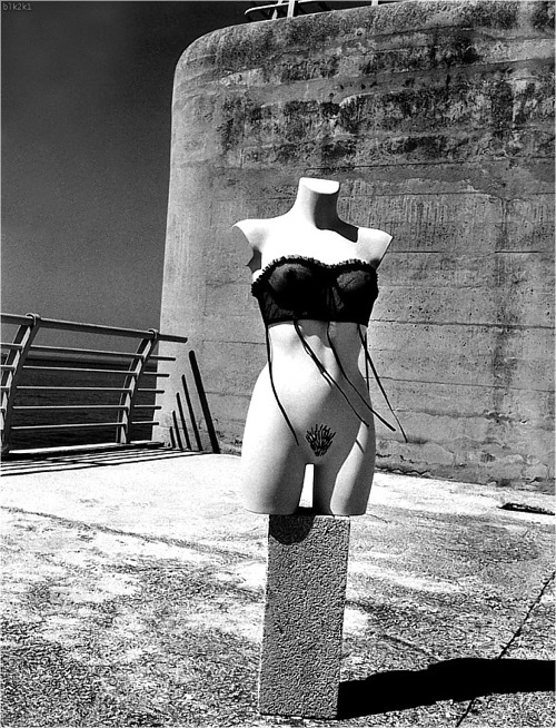 helmut_newton_various_photos10.jpg