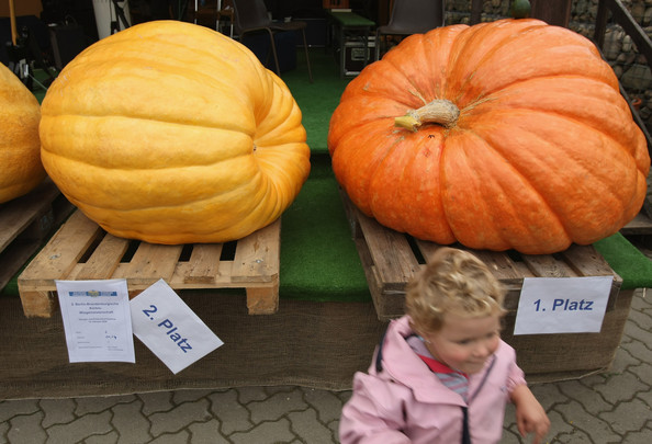 halloween_klaistow_germany_pumpkin_mania7.jpg