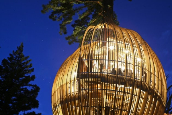 Yellow Treehouse Restaurant11.jpg