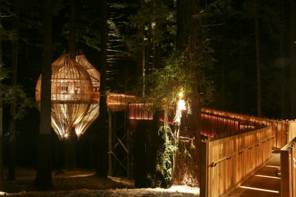 Yellow Treehouse Restaurant16.jpg
