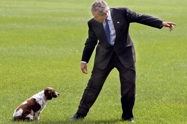george_w_bush_dog_spot_september_2002.jpg