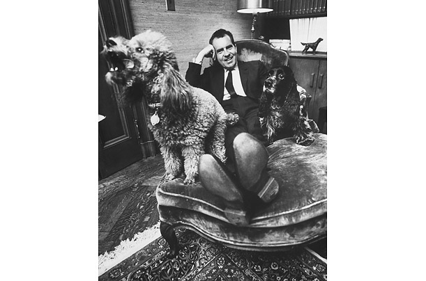 richard_nixon_checkers_cocker_spaniel_vicky_poodle.jpg