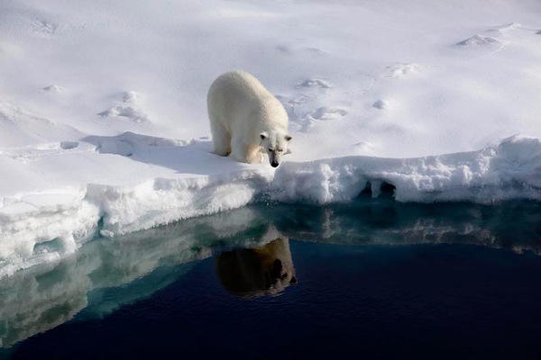greenpeace_arctic_sunrise04.jpg