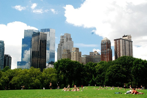 new_york_manhattan_summer_in_the_city_central_park.jpg