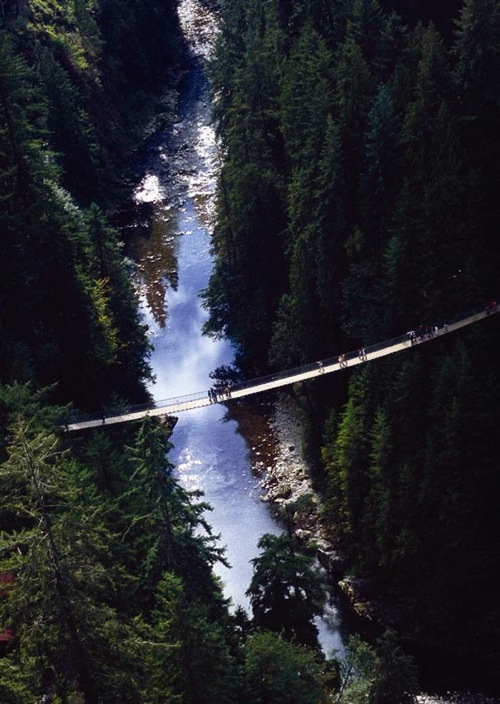 vancouver_capilano_suspension_bridge.jpg