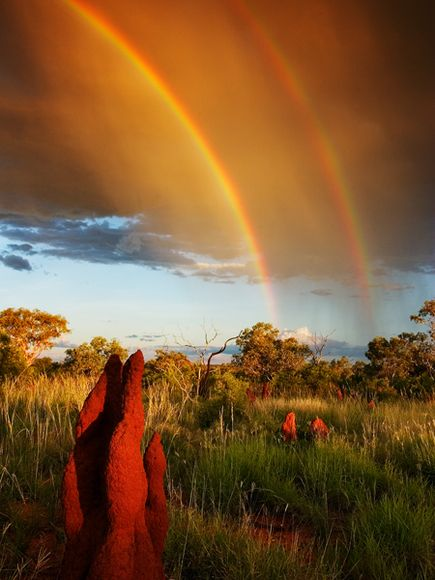 Australian Rainbow by Randy Olson.jpg