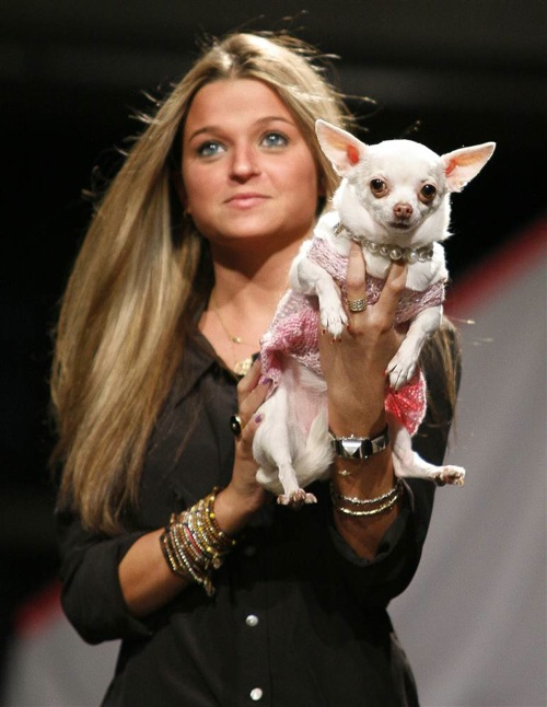 pet_apparel_fashion_show_new_york08.jpg