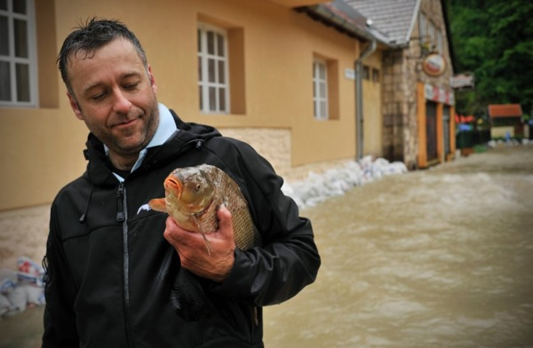 floods_hungary_fish.jpg