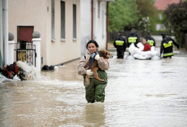 floods_poland_dog_saved.jpg