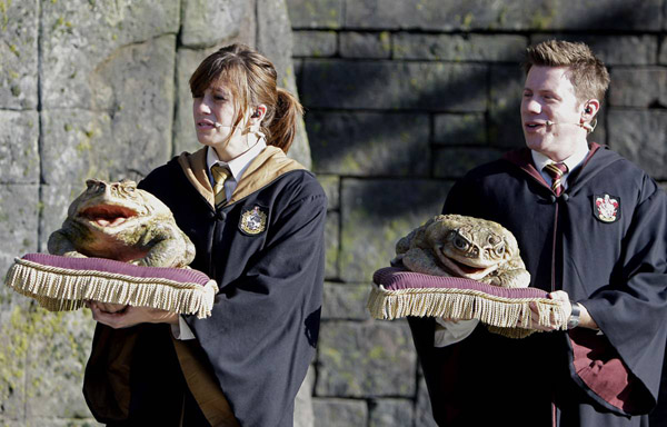 ss-100611-harry-potter-world-04_ss_full.jpg