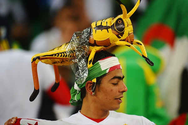 world_cup_2010_algeria_fan.jpg