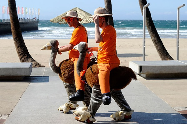 world_cup_2010_netherlands_fans_ostrich.jpg