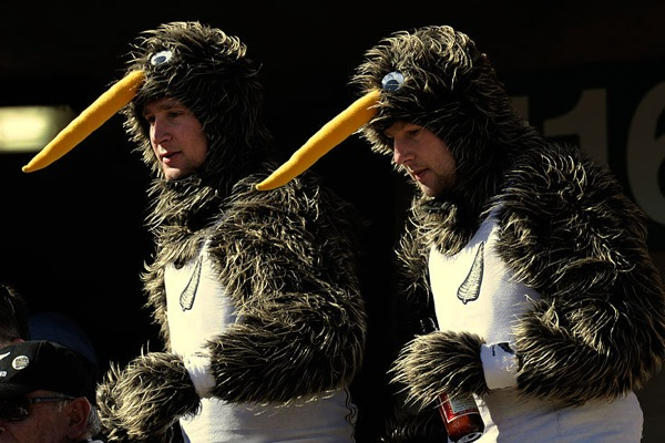 world_cup_2010_new_zealand_fans3.jpg