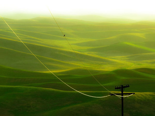 hills-palouse-washington_23931_990x742.jpg