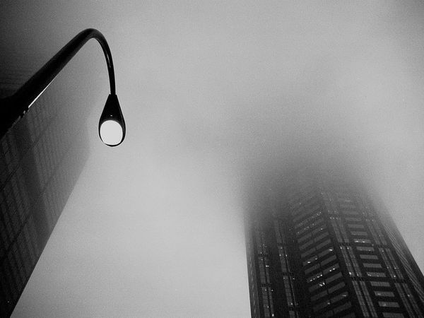 foggy-chicago-street_21244_600x450.jpg
