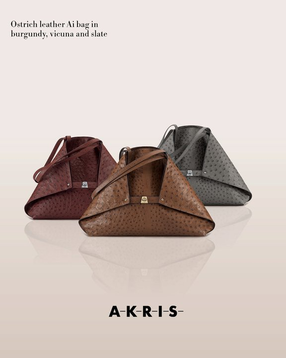 akrisaw11handbagscollection1.jpg