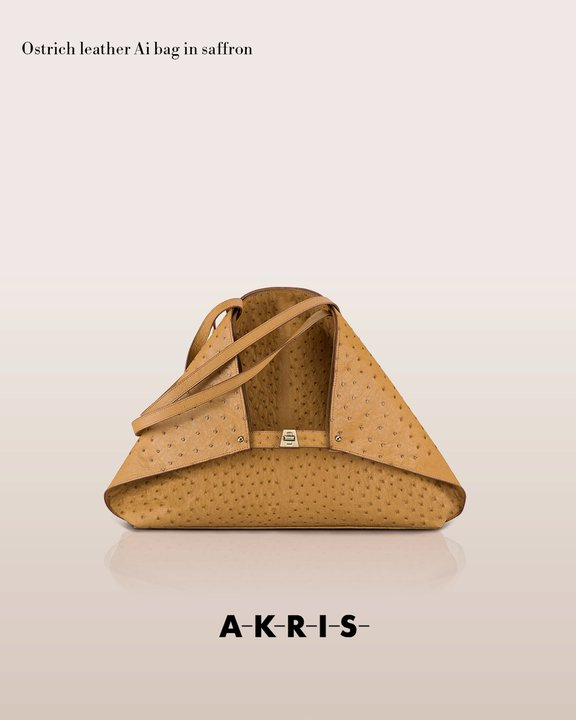 akrisaw11handbagscollection2.jpg
