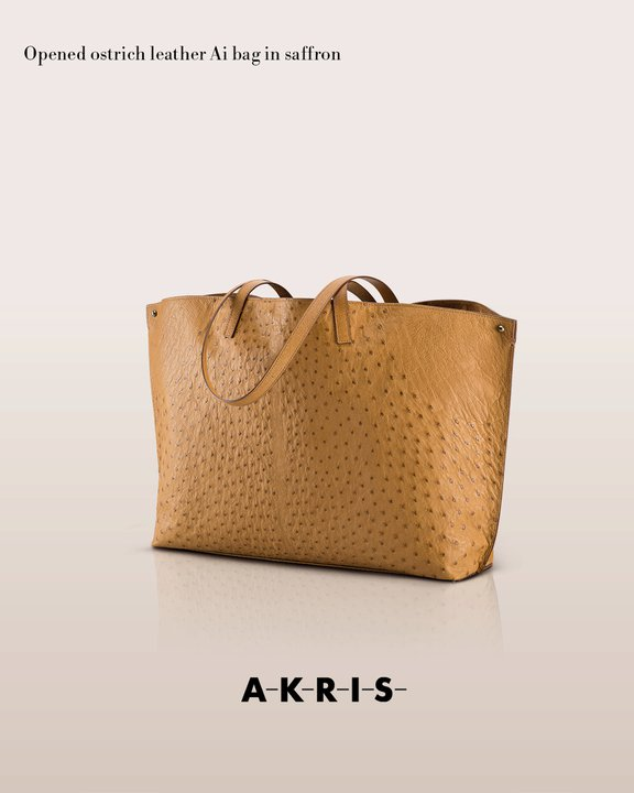 akrisaw11handbagscollection3.jpg