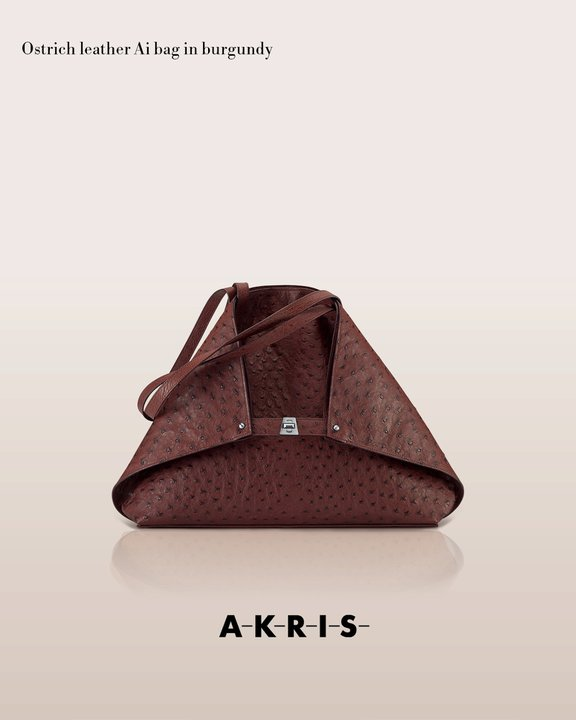 akrisaw11handbagscollection4.jpg