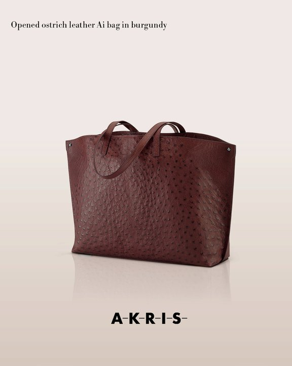 akrisaw11handbagscollection5.jpg