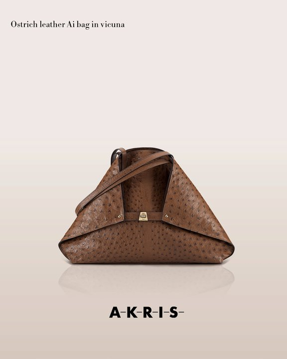 akrisaw11handbagscollection6.jpg