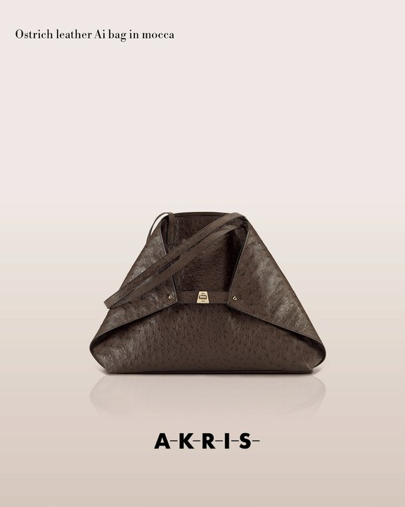 akrisaw11handbagscollection8.jpg