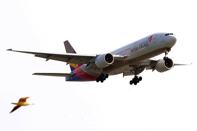 world_airline_awards_3_asiana_airlines.jpg