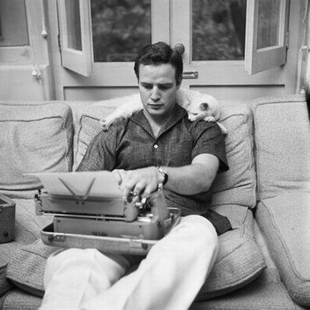 Marlon Brando with cat.jpg