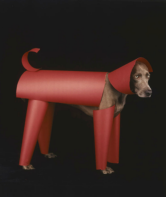 william-wegman-dog-portraits-1.png