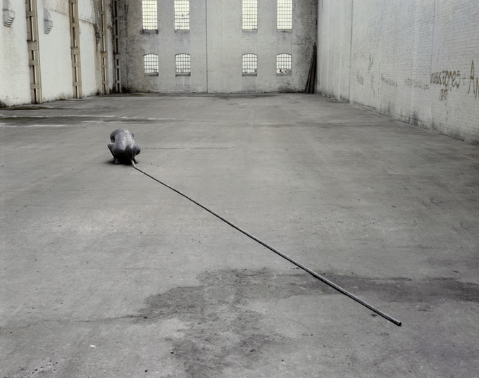 AntonyGormley15.jpg