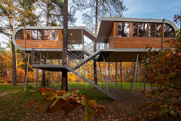 tree-house-baumraum-01.jpg