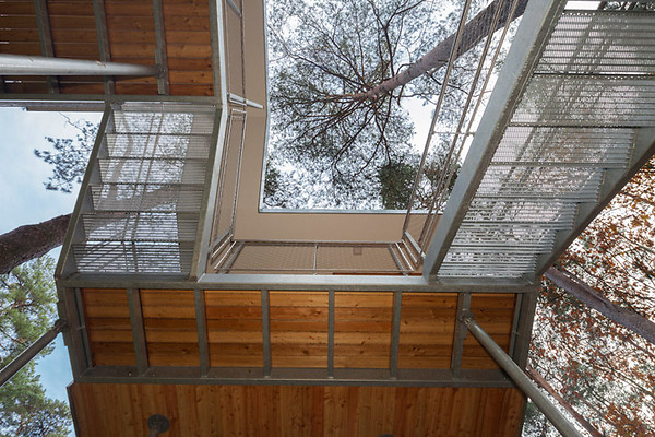 tree-house-baumraum-07.jpg