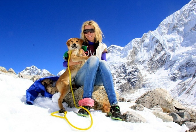 dogmounteverest5.jpg