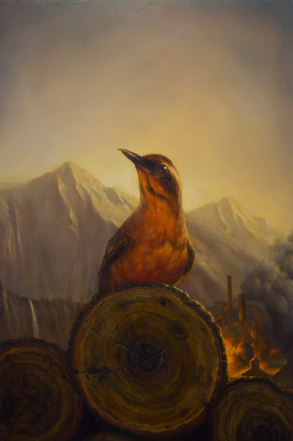 MartinWittfooth12.jpg