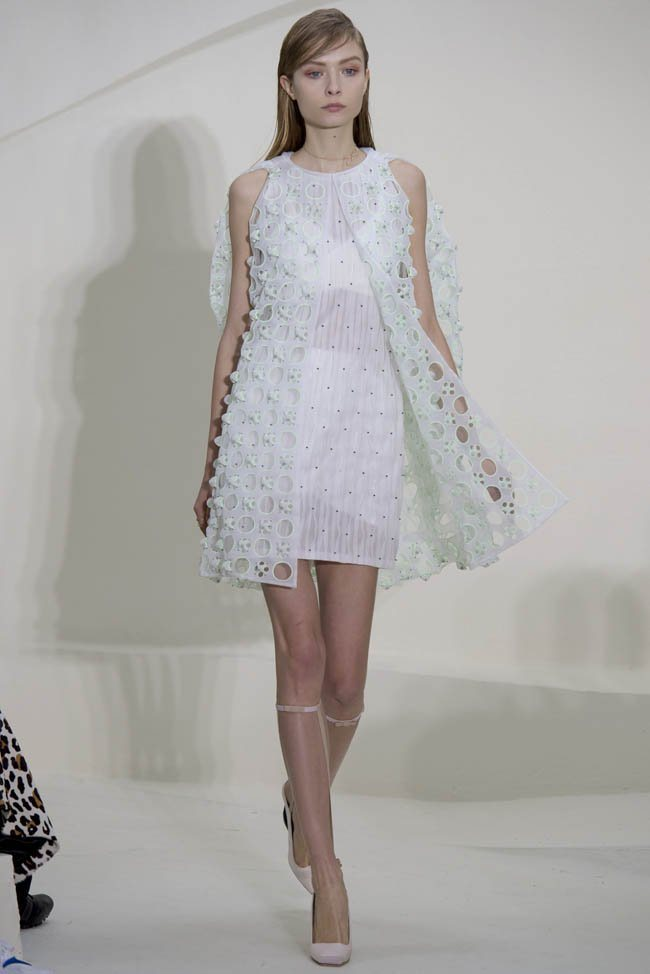 dior-haute-couture-spring-2014-show3.jpg