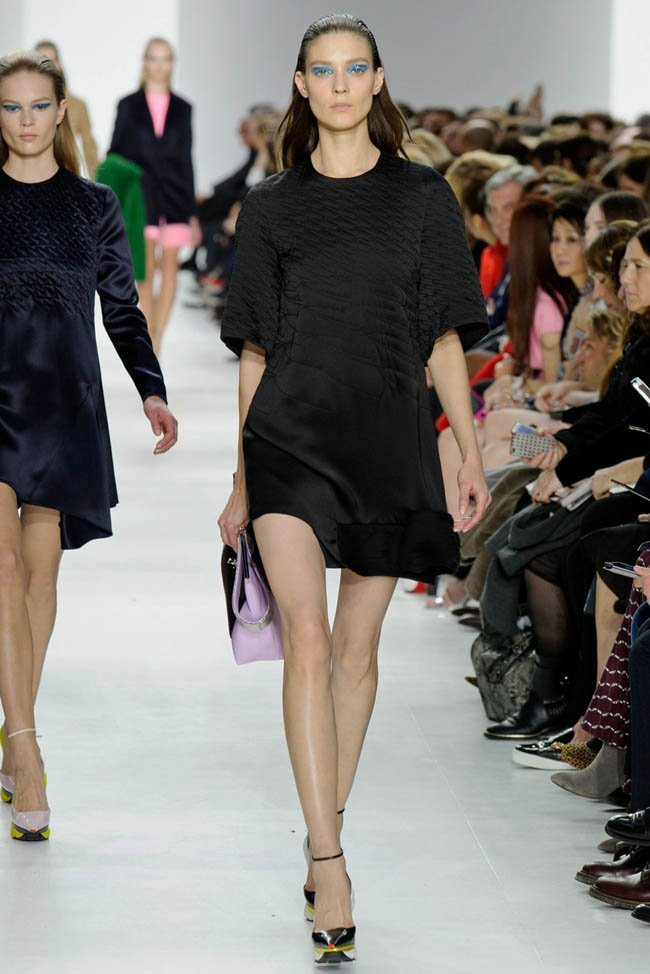 dior-fall-winter-2014-show14.jpg