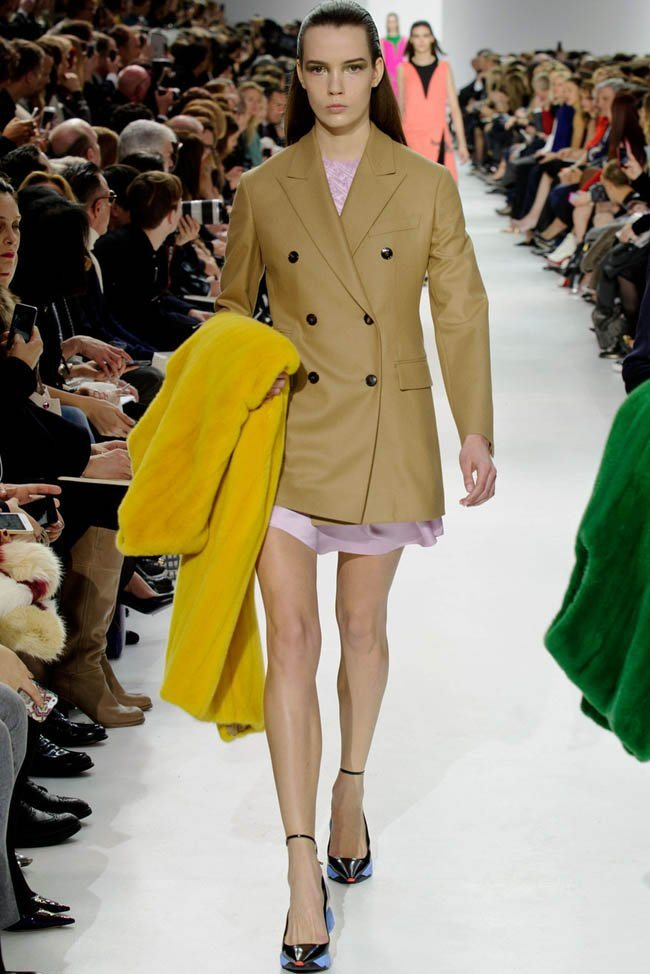 dior-fall-winter-2014-show17.jpg