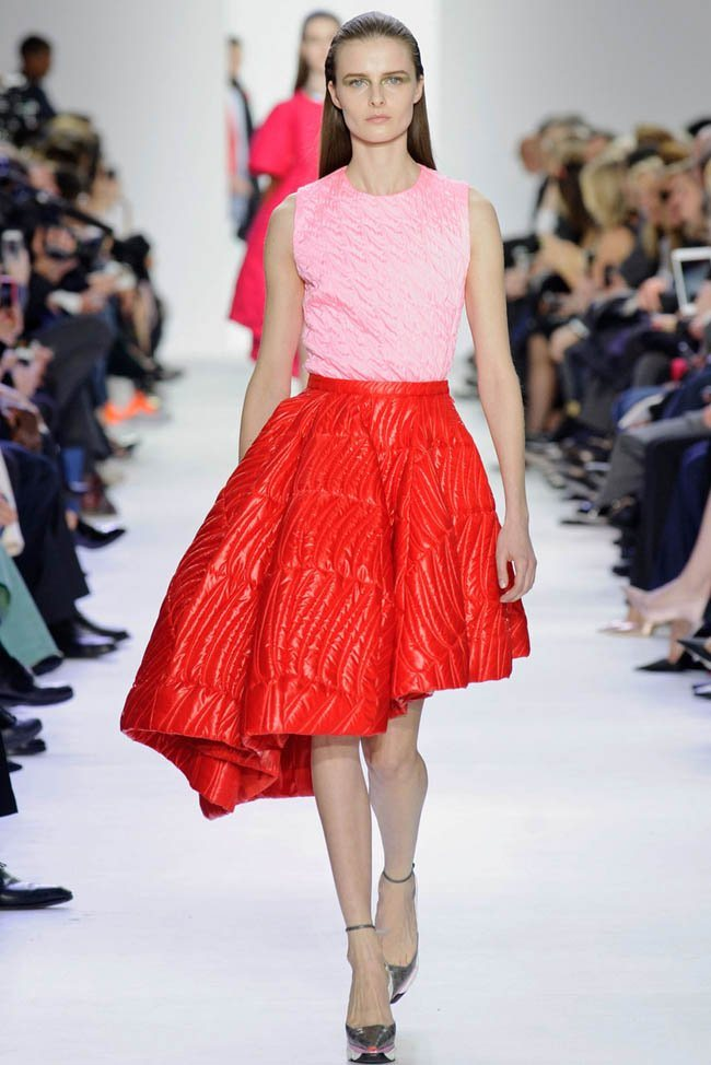 dior-fall-winter-2014-show40.jpg