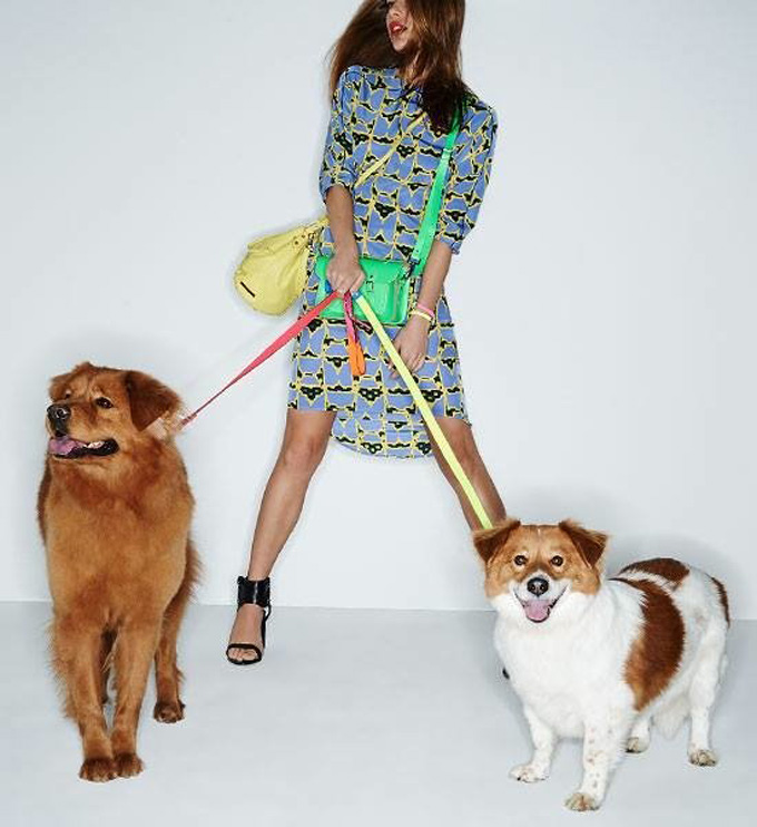 550x600xshopbop-dogs-spring-accessories7.jpg.pagespeed.ic.q8OJXdTNnu.jpg