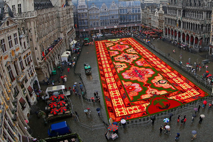 Brussels-Flower-Carpet-3.jpg