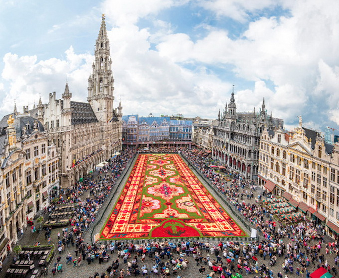Brussels-Flower-Carpet-4.jpg